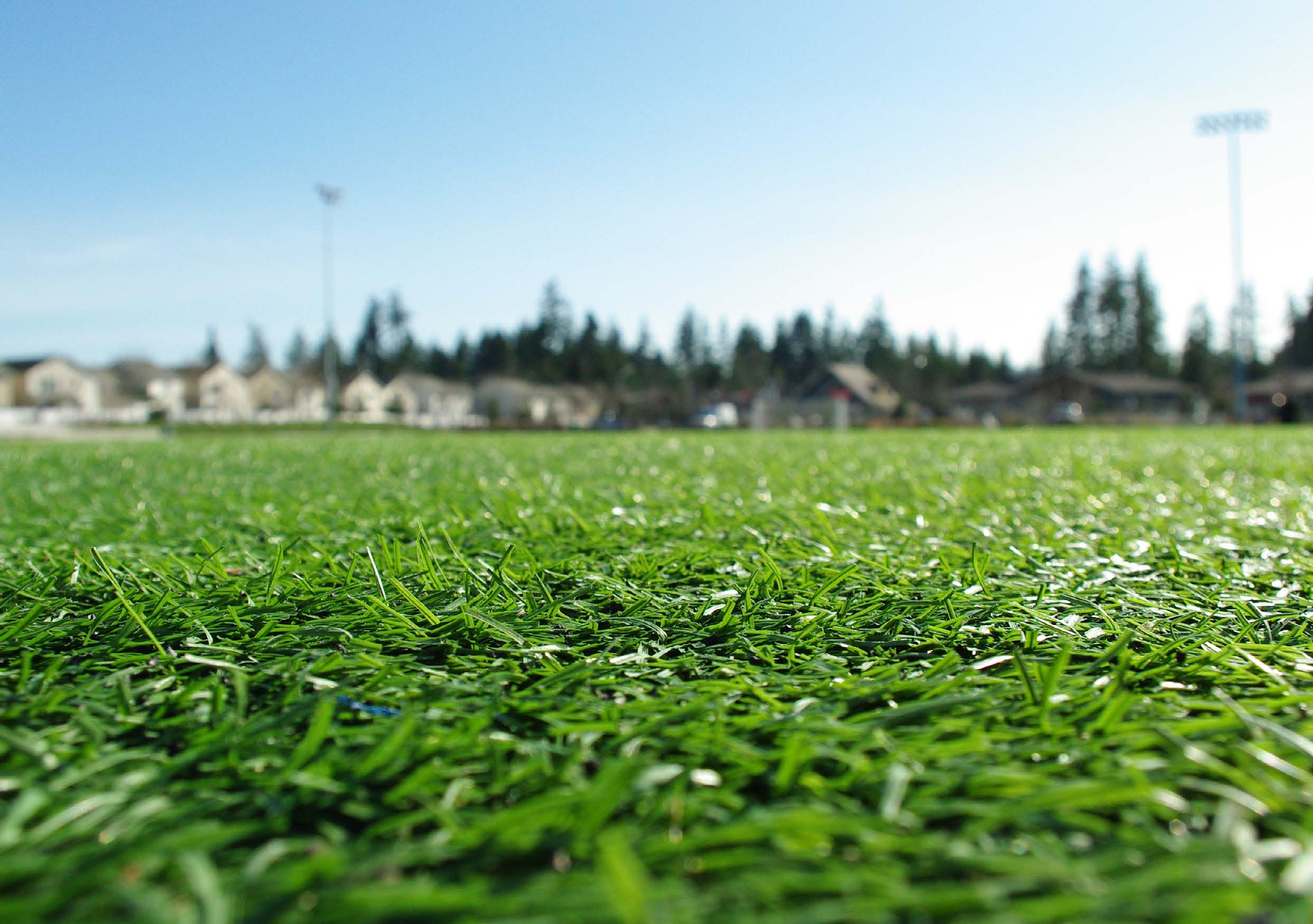 Artificial Turf & Supplies